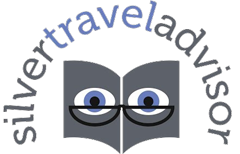 Silver Travel Advisor logo